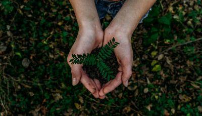 Blockchain y medio ambiente. Una herramienta para la sostenibilidad (Parte I)