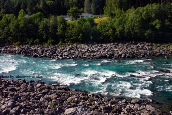 Mountain cold river with beautiful color of water in Norway among the forest.
