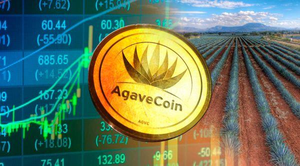 Agavecoin muestra una apreciación acelerada desde su ICO y supera el valor del peso