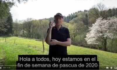 El simil del pastor francés que se viraliza por las redes en tiempos de pandemia