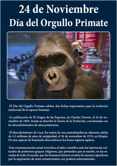 24 de Noviembre: Día del Orgullo Primate