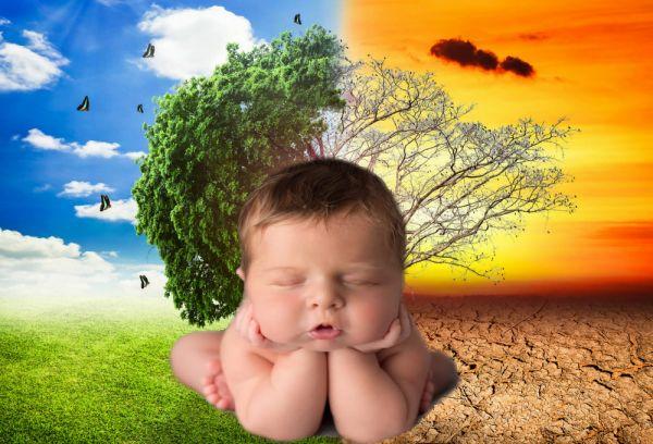 El cambio climático adelanta los partos en el mundo.