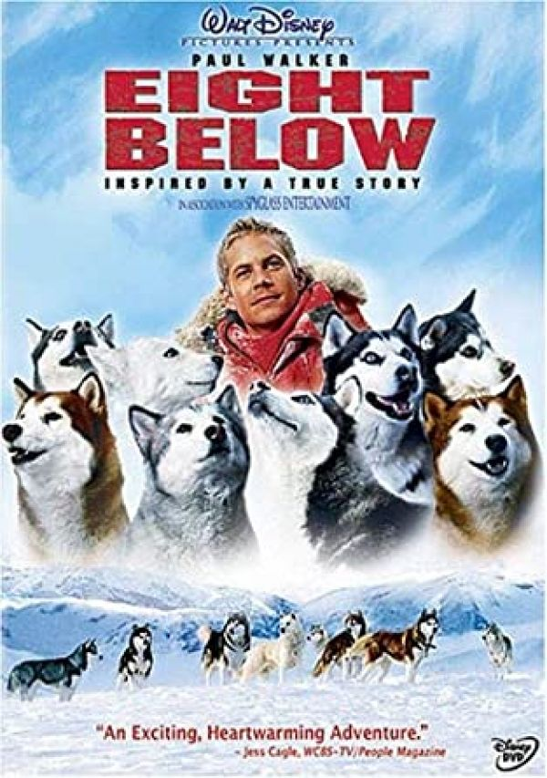 Eight Below – A Movie Review