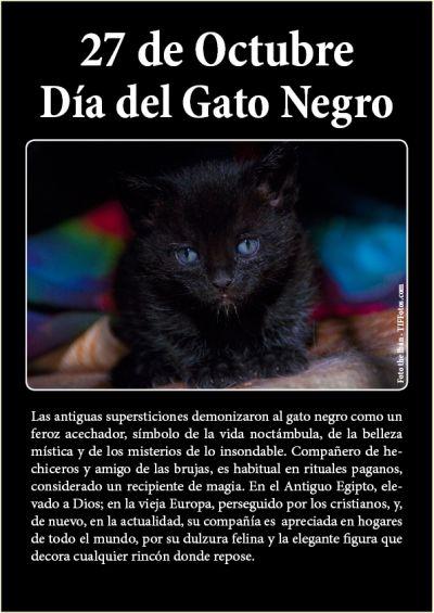 27 de Octubre, el Día del Gato Negro