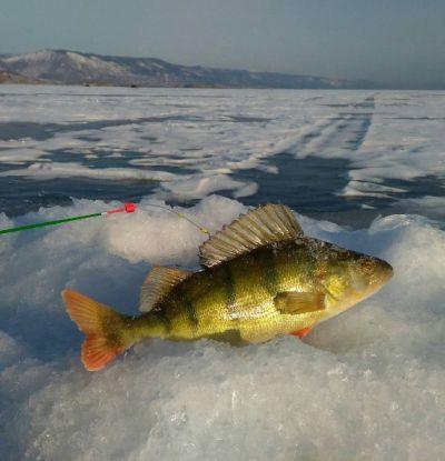 Fishing on the Lake Baikal