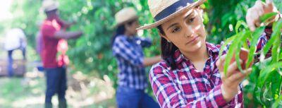 Una promesa de conexión entre mujeres rurales de Latinoamérica